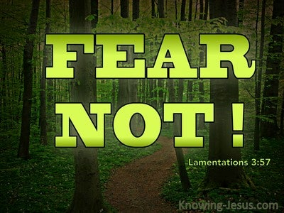 Lamentations 3:57 You Drew Near And Said Fear Not (green)